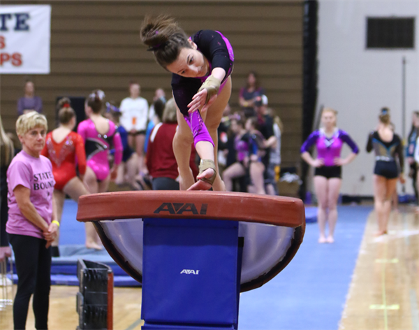 State Gymnastics Championships Preview