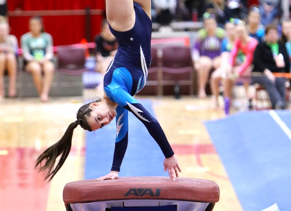 State Gymnastics Qualifying & Format Revised