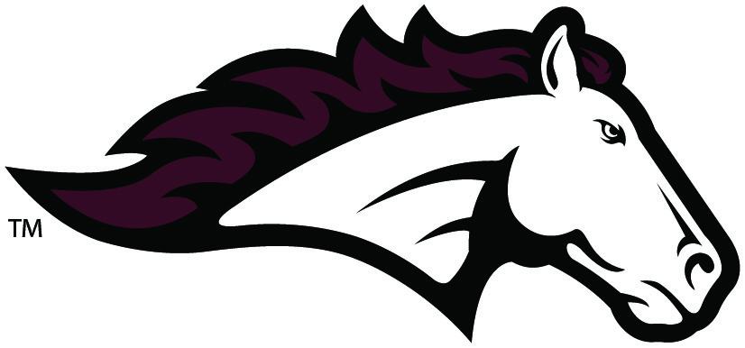 Wisconsin Interscholastic Athletic Association Gt Schools